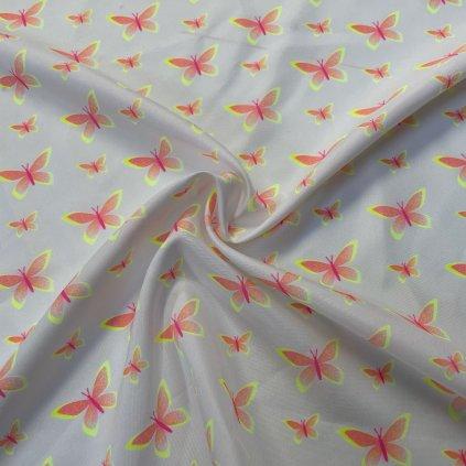 769004 1 butterfly neon na bílé
