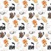 765031 kočičky (1)