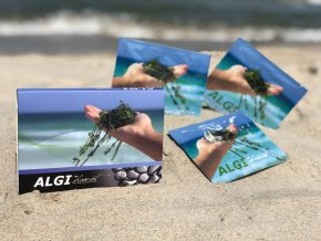 AlgiChamot Balíček - ALGI BASIC SET