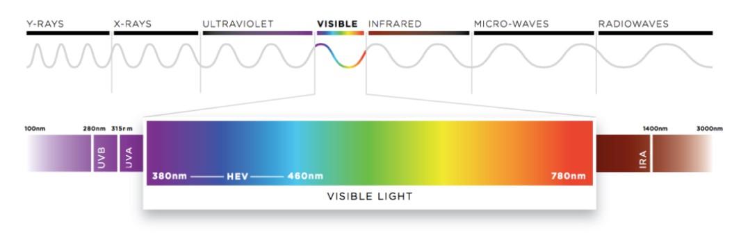 HEV spektrum