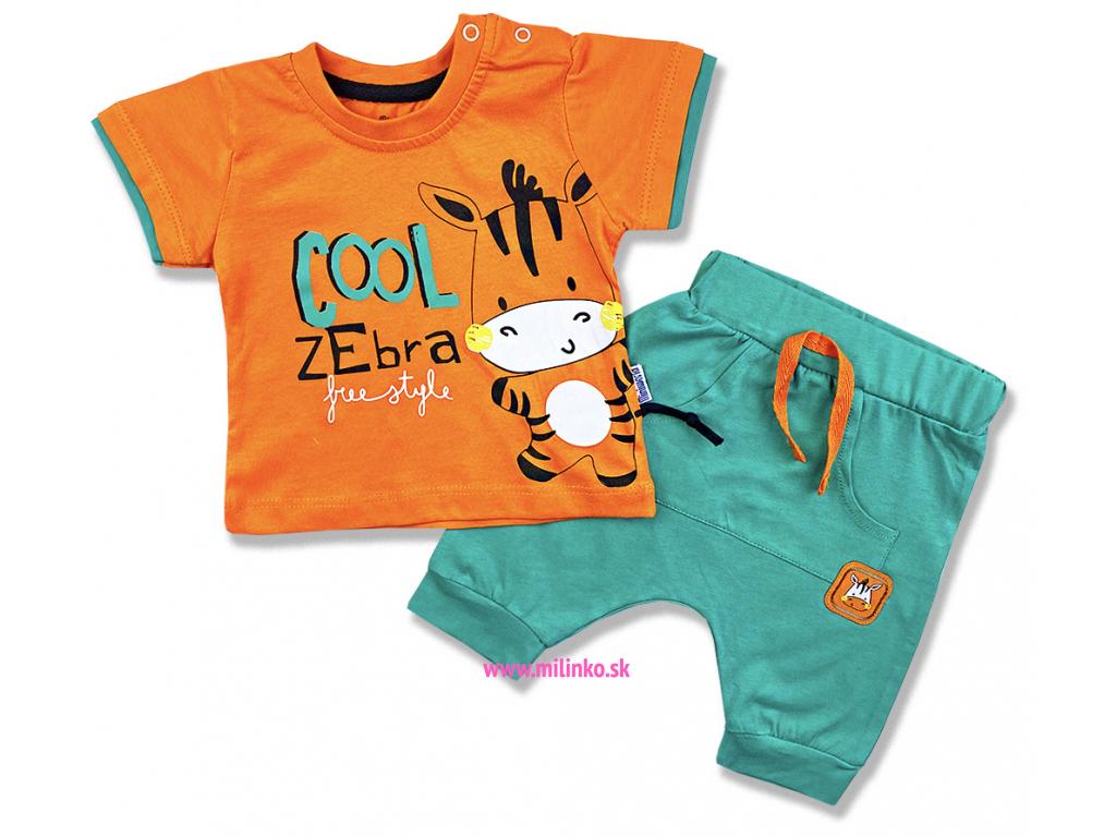 2dielny letný set pre bábätká Cool Zebra