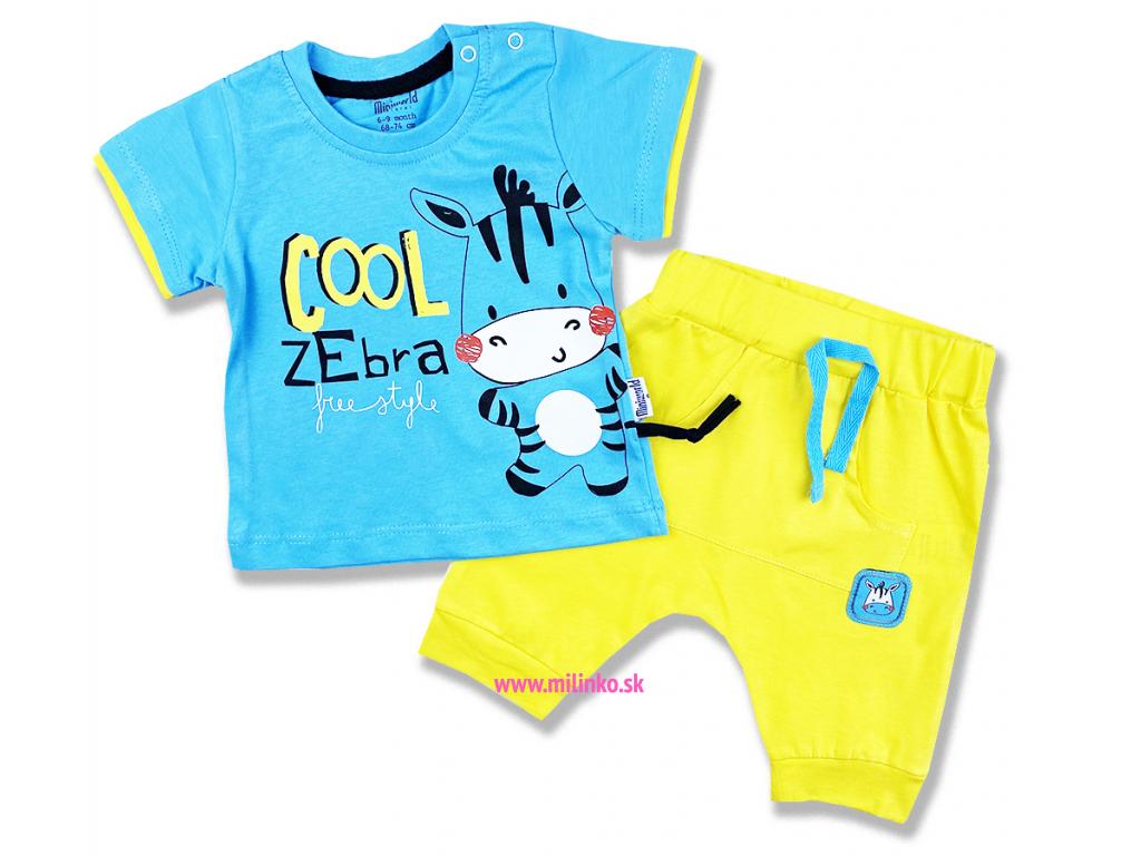 2dielny letný set pre bábätká Cool Zebra1
