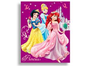 Detská deka Disney - Princess, fialová 120x150cm