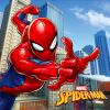 vankúš spiderman a