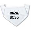 slintáčik mini boss