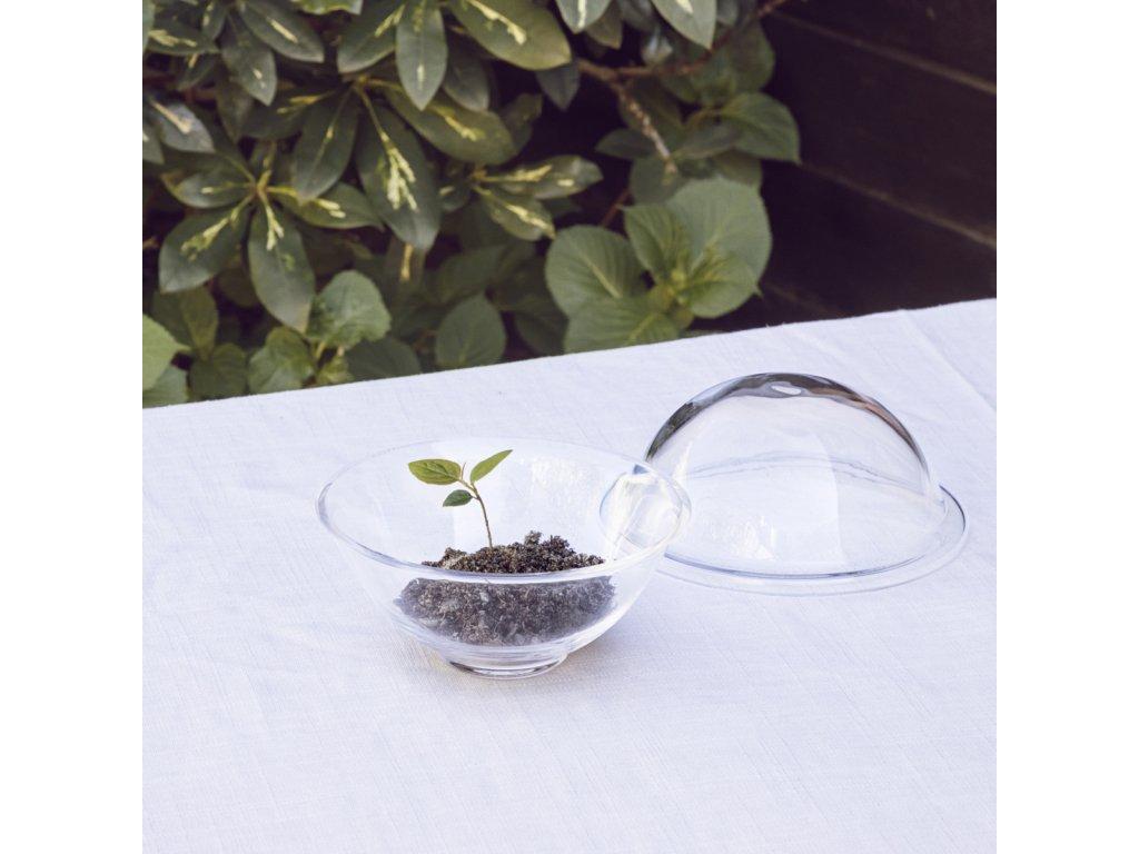 Dóza Chapeau Glass - 12 cm