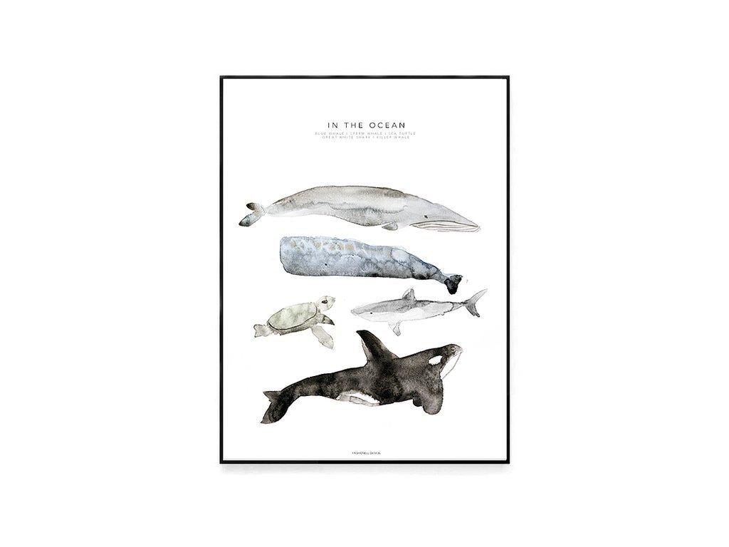 Plakát In the Ocean 30x40cm