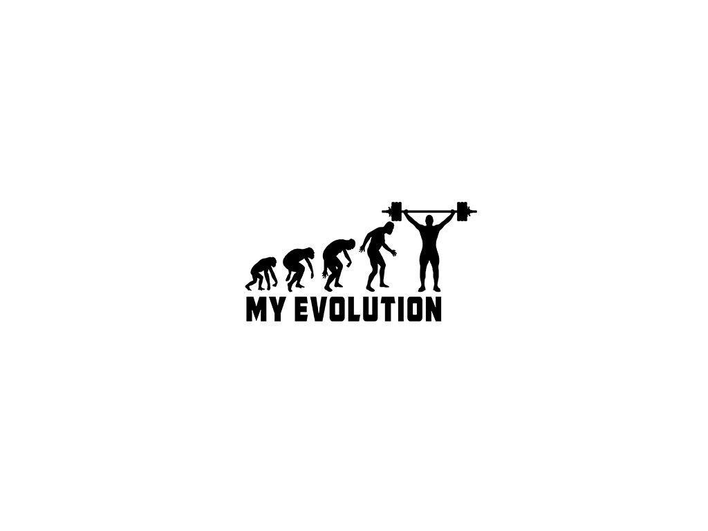 My evolution LIFTER VR