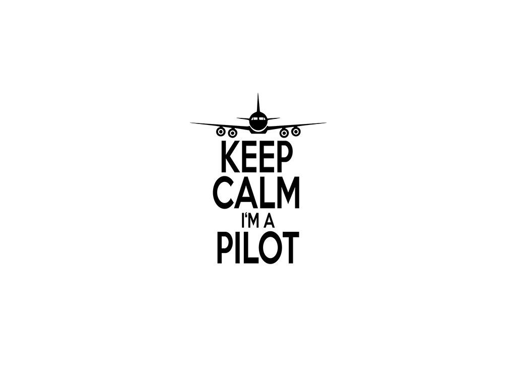 Keep calm I'M A PILOT VR