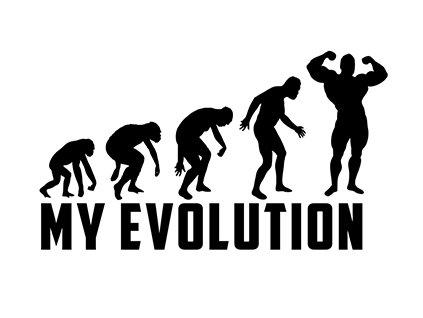 My evolution VR