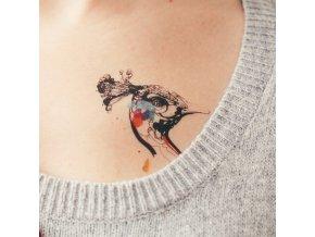 Tetovačka Tattly Peacock