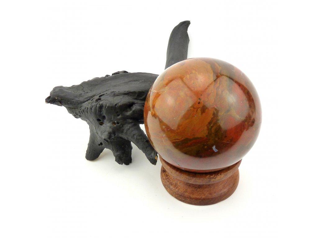 Zkamenělé dřevo koule