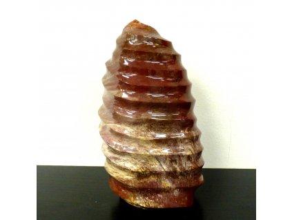 Zkamenělé dřevo stojící forma