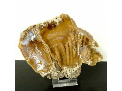 Achátový korál