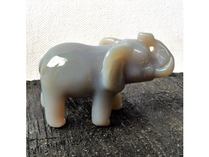 Achát slon