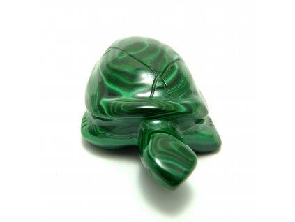 Malachit želva