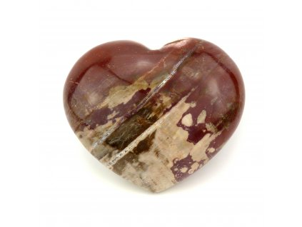 Zkamenělé dřevo srdce