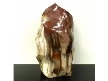 Zkamenělé dřevo plamen
