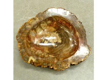 Zkamenělé dřevo miska