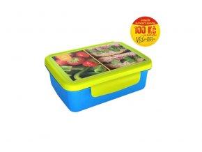 R&B zdravá sváča box na svačinu recepty modra zelena