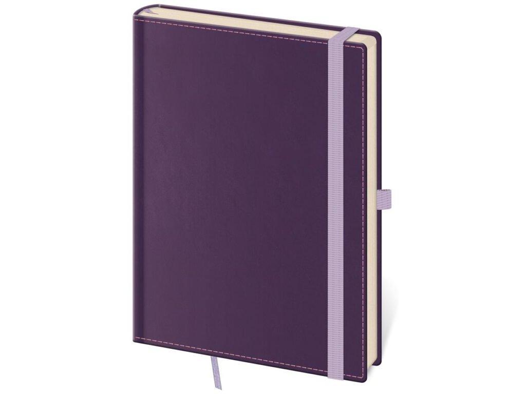 Zápisník Double Violet L linajkový