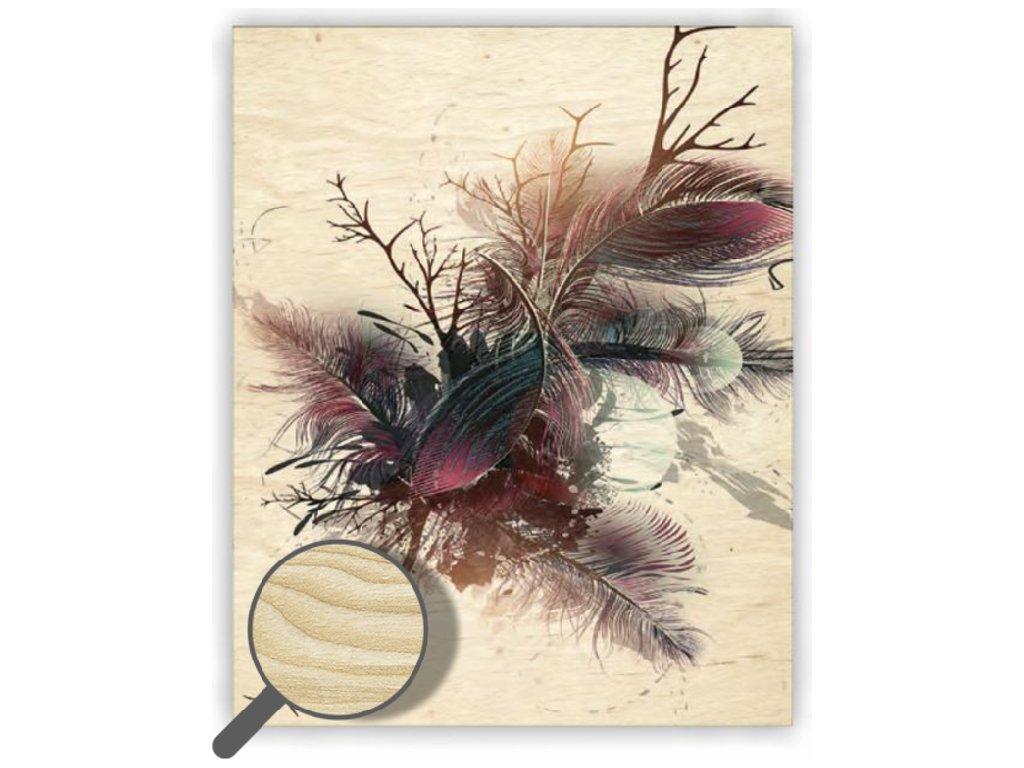 Drevený obraz Feathers
