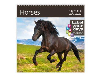 Kalendár Horses