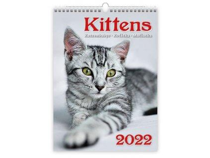 Kalendár Mačičky