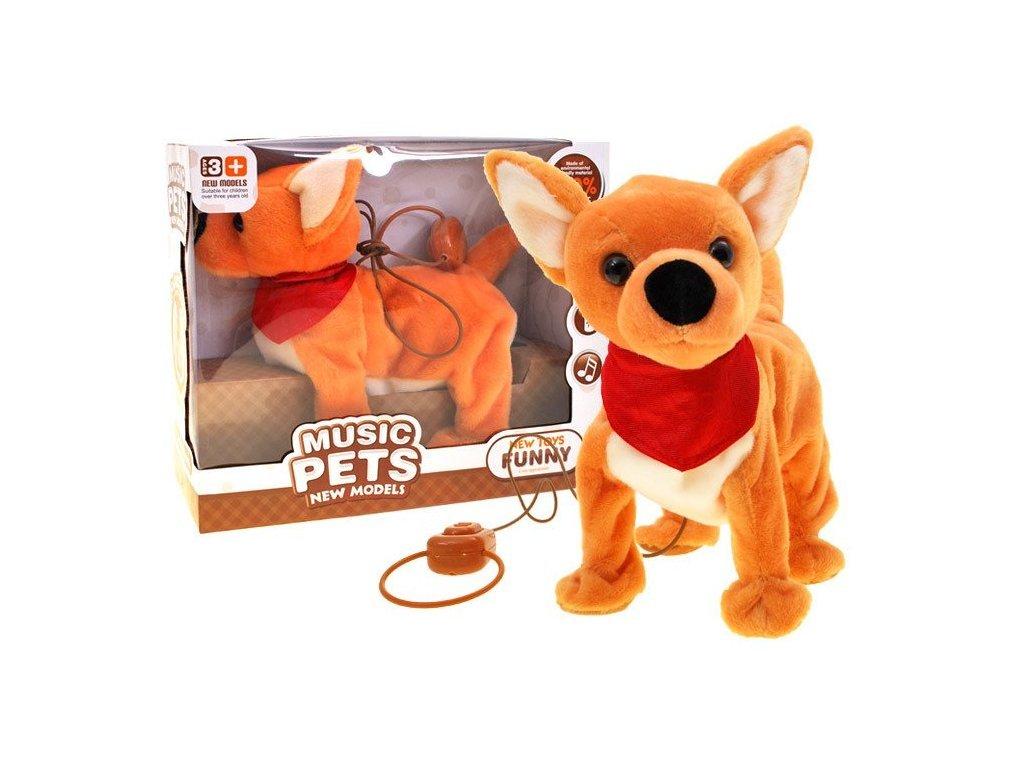 pol pl Interaktywny Piesek Chihuahua smycz chodzi ZA1796 11838 1
