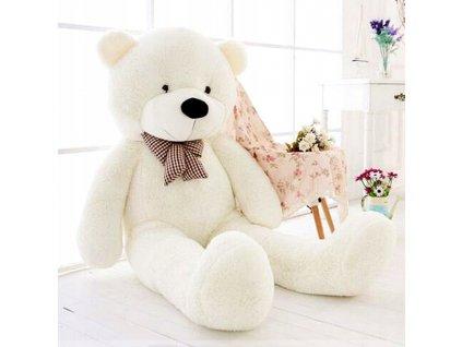 Plyšový medvěd (2)