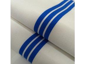 DOMESTIK 145/P03 modrý pruh do zdravotnictví 150cm / VELKOOBCHOD