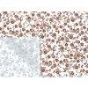 HANA 120 Chlupkal (213016-1-2 Růže hnědá malá)-141cm