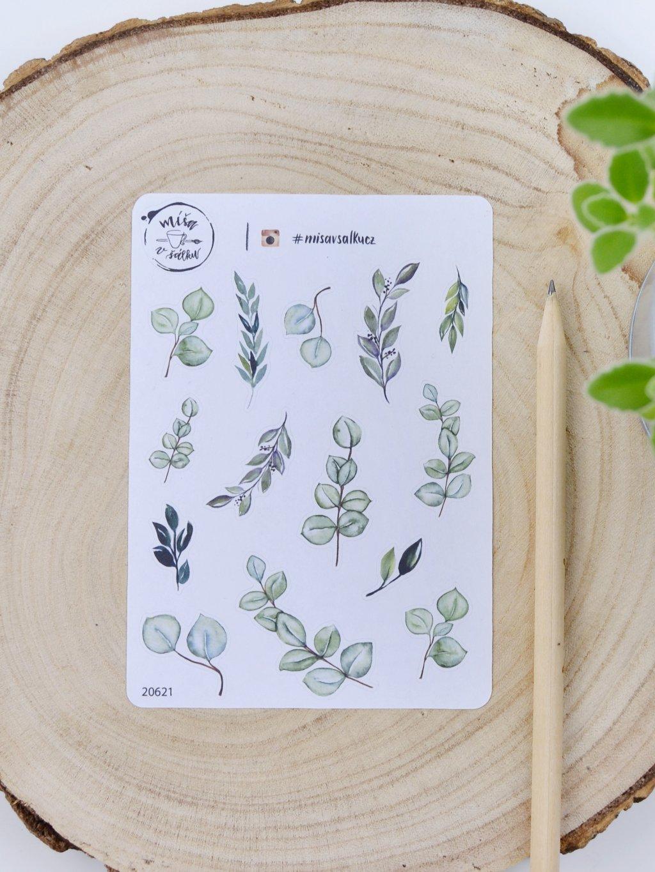 Samolepky - Eukalyptus