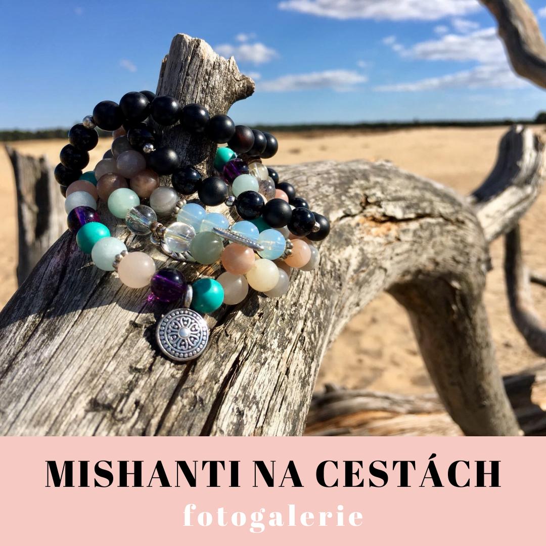 Mishanti na cestách