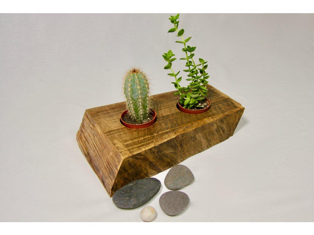 Květináč pro kaktusy a sukulenty