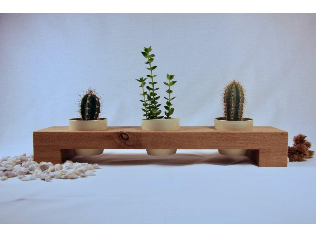 Stojan pro kaktusy a sukulenty