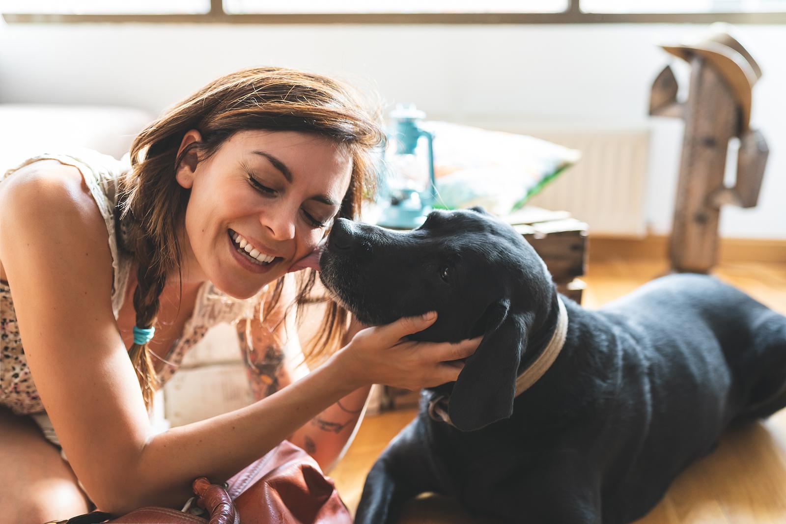 Hogyan segíthetünk a kutyának, hogy hosszú, egészséges, boldog életet éljen?