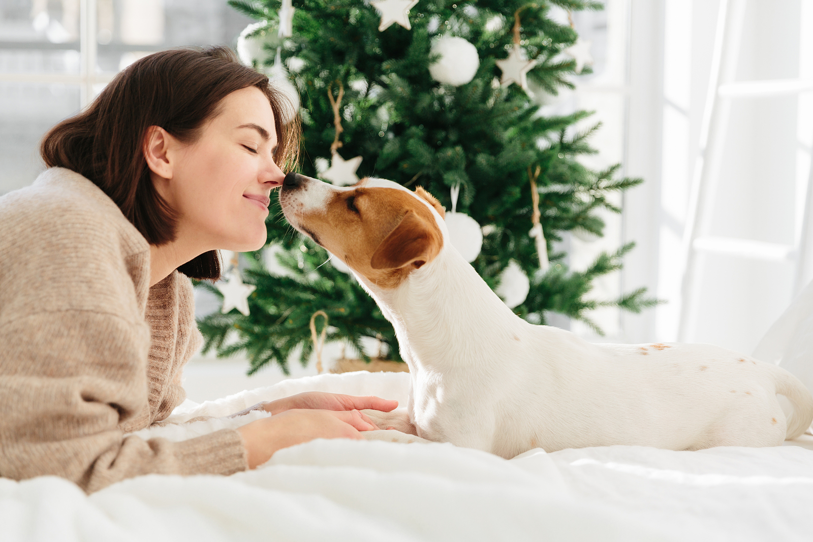 Köszönjük a kutyáknak, és minden háziállatnak, hogy 2020-ban is mellettünk voltak!