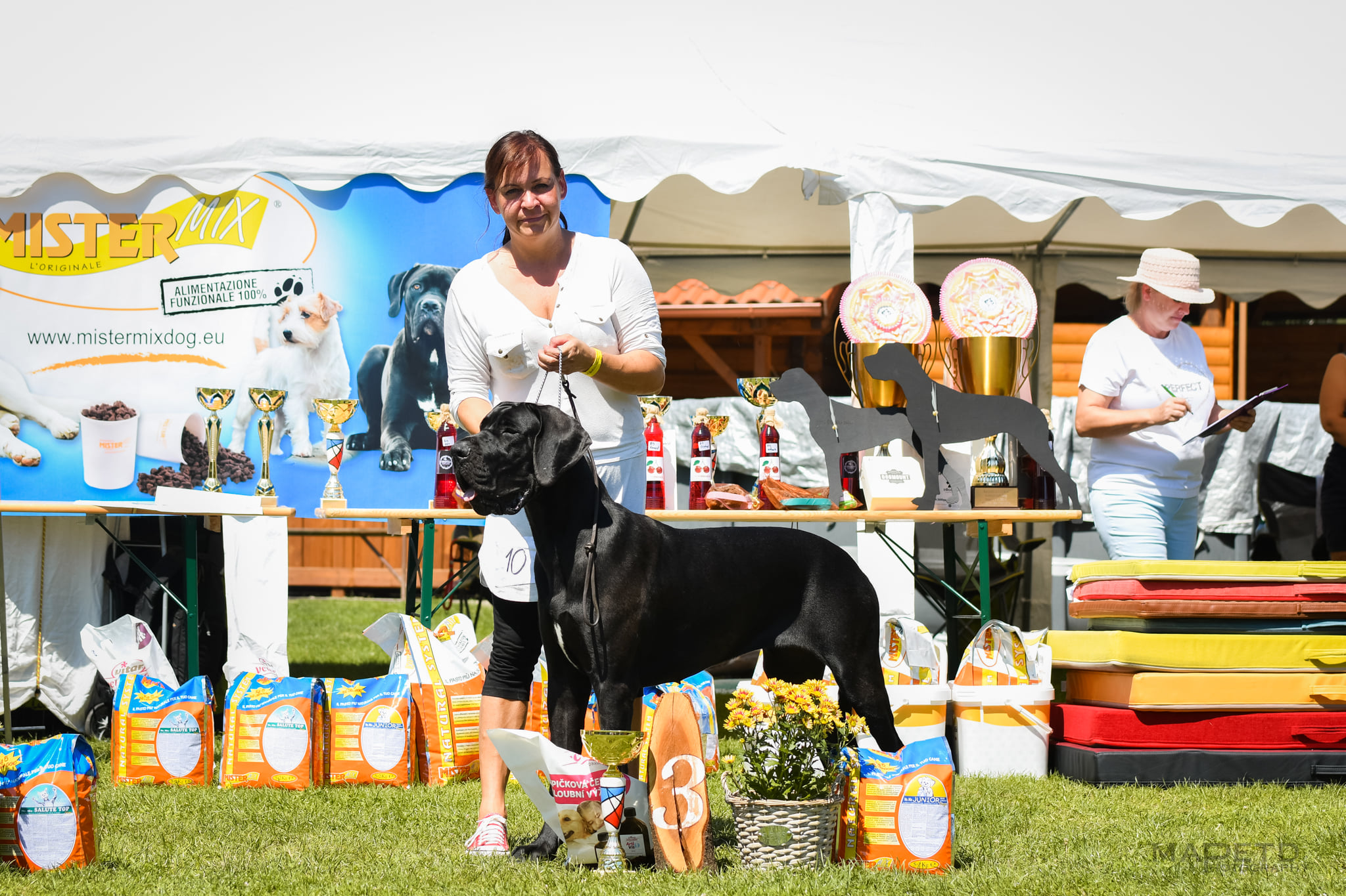 7.8.2021 SPECIAL DOG SHOW / SLOVAKIA