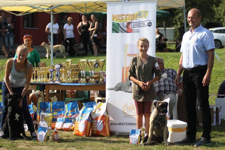 Club and Special dog show of MOLOSS CLUB CZ  12.9.2020 /  Zbraslav u Brna