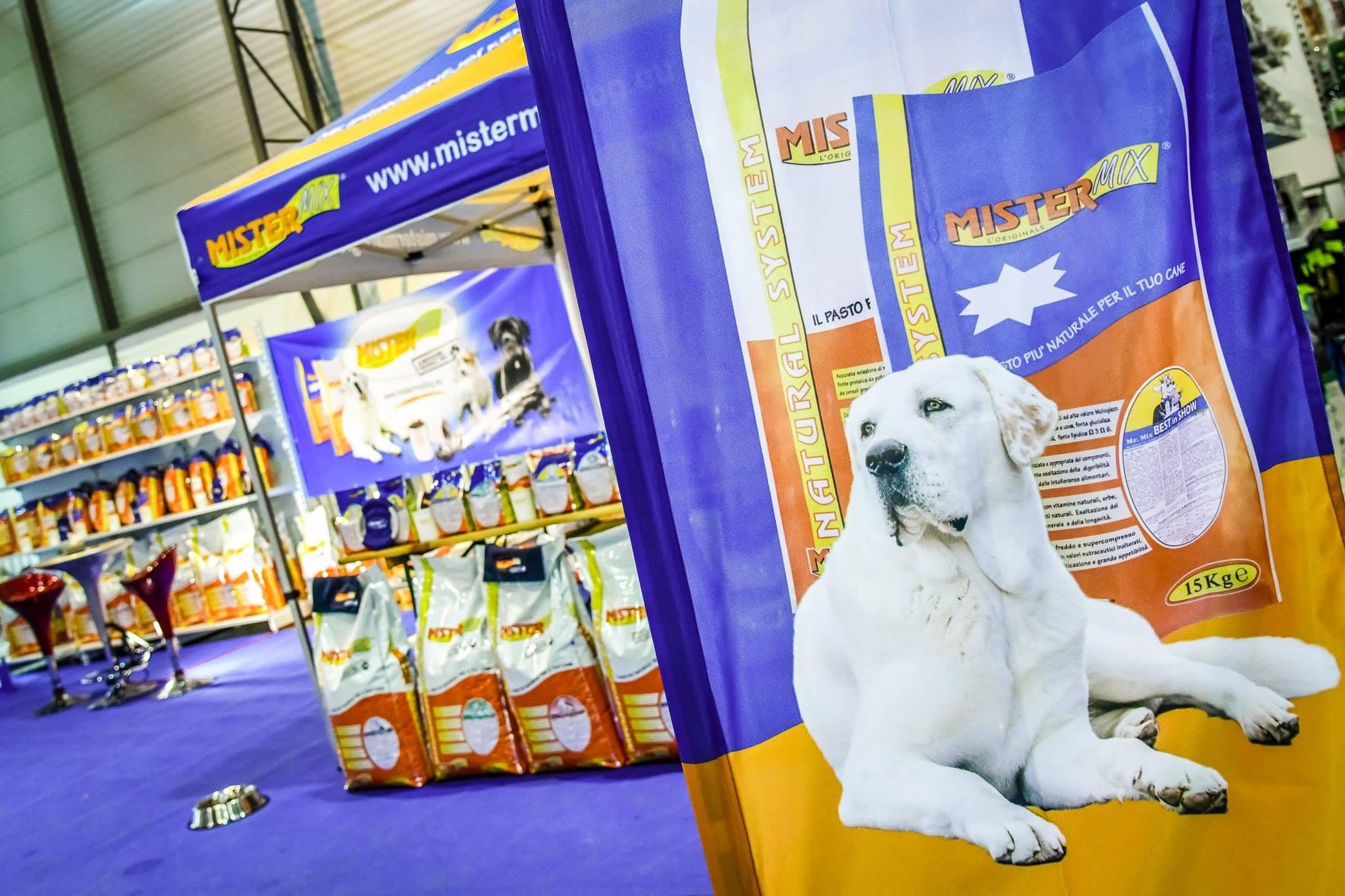 NATIONAL DOG SHOW FOR ALL BREEDS 2019, Brno, Czech republic