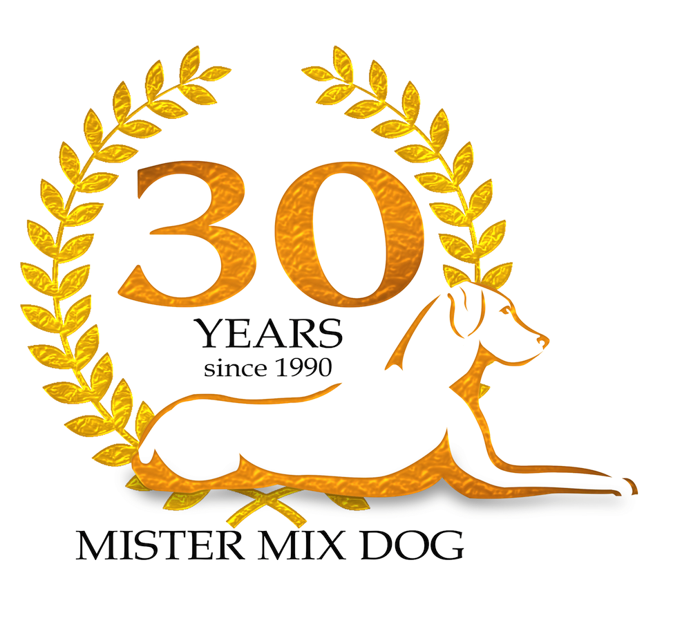 _mister-mix_dog 30 years-1