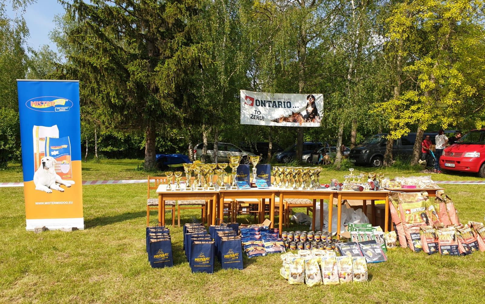KLUBOVÁ VÝSTAVA MOLOSS CLUBU, MC 2019 26.5., Choťovice