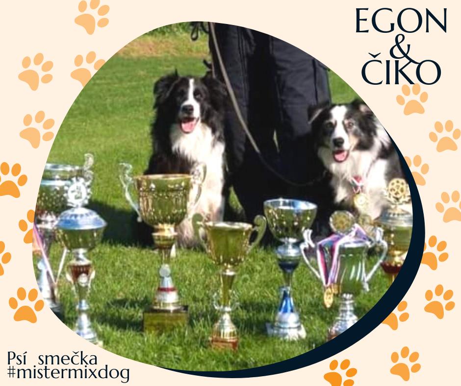 Policejní psi Egon a Čiko milují Mister Mix Dog