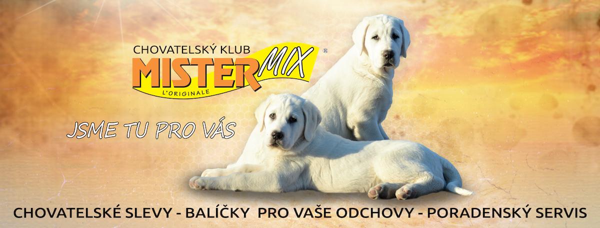 Chovatelský klub Mister Mix Dog