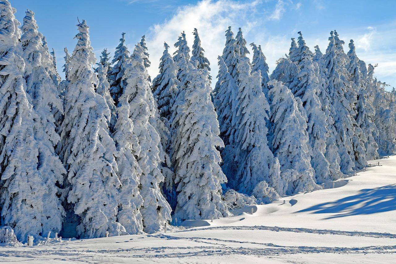 zima-hory