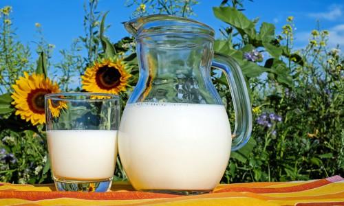 Alergie na laktózu (intolerance laktózy)