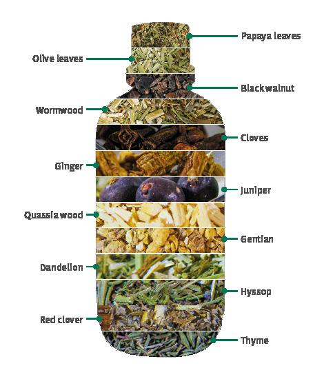 Doplněk stravy na trávení Pro Intest