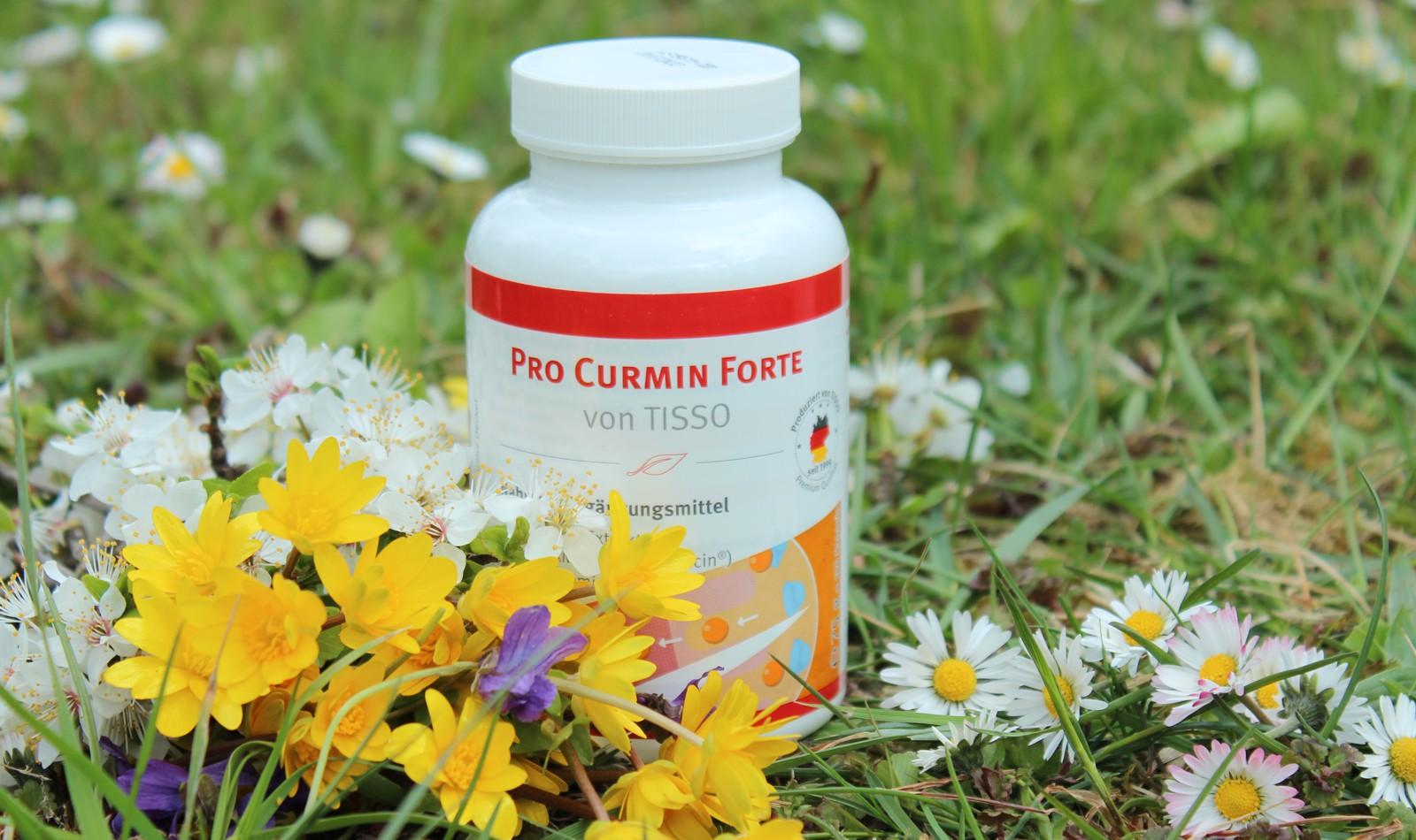 Kurkuma v doplňku stravy Pro Curmin Forte