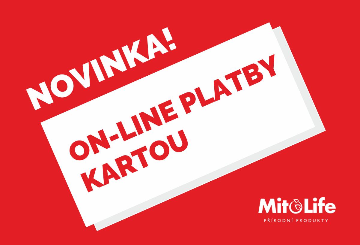 online-platby-kartou